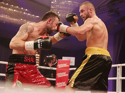 Boxer Schwergewicht Rangliste